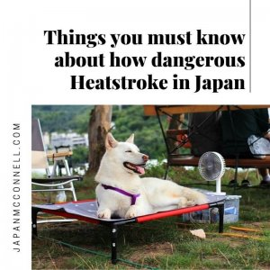Things you must know about how dangerous Heatstroke in Japan