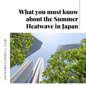 What you must know about the Summer Heatwave in Japan