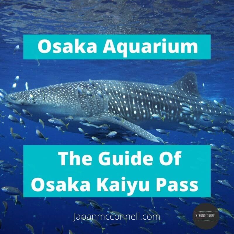 Osaka aquarium, Kaiyukan, Travel Pass, Osaka Kaiyu Pass guide