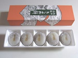 Kiyome mochi, Japanese traditional sweet, rice cake, the red bean paste filling, Anko, Habutaemochi, Nagoya, Japan