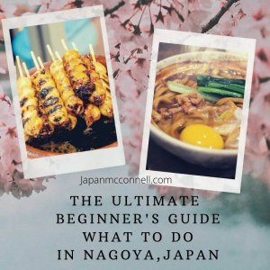 the ultimate beginner's guide what to do in nagoya Japan