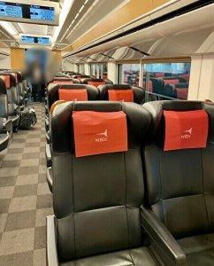 Narita Express inside