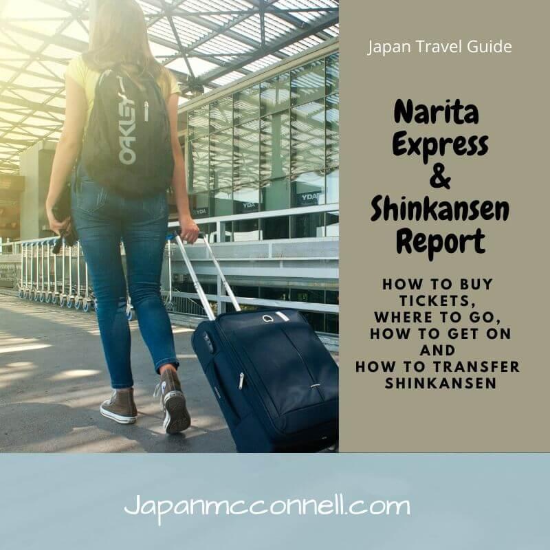 narita express and shinkansen report 2