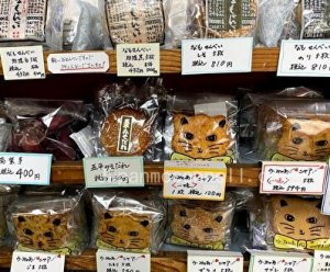 rice crackers, cute, namoka, nagoya