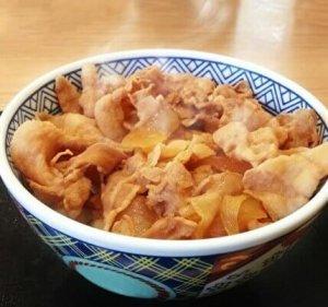 pork bowl, Yoshinoya, Japan