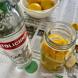 transfer lemon peels into the jar, vodka