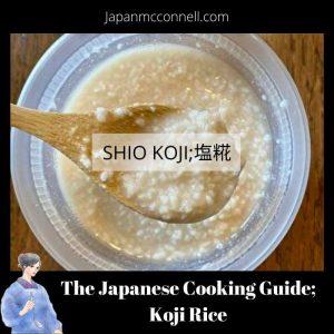 the Japanese cooking guide, shio koji, koji rice