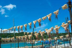 sun dry, squid, Okinawa