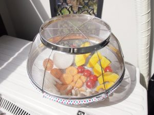 the equipment for sun dry, colander