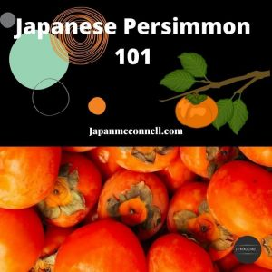 Japanese persimmons 101