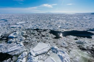 Okhotsk sea, drift ice, Hokkaido, Japan, Winter