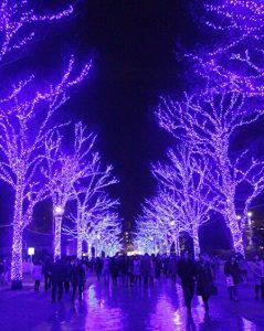 Blue cave SHIBUYA, winter illuminations in Shibuya, Tokyo, Japan
