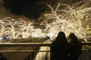 Meguro river winter illuminations, Tokyo