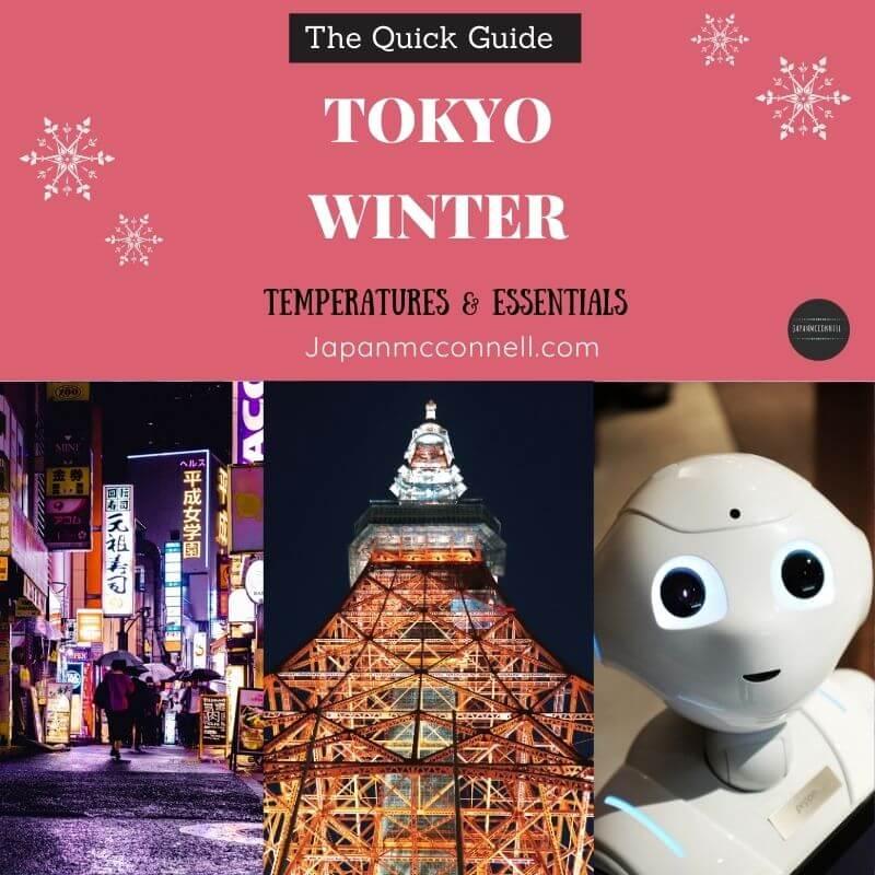 Tokyo winter guide