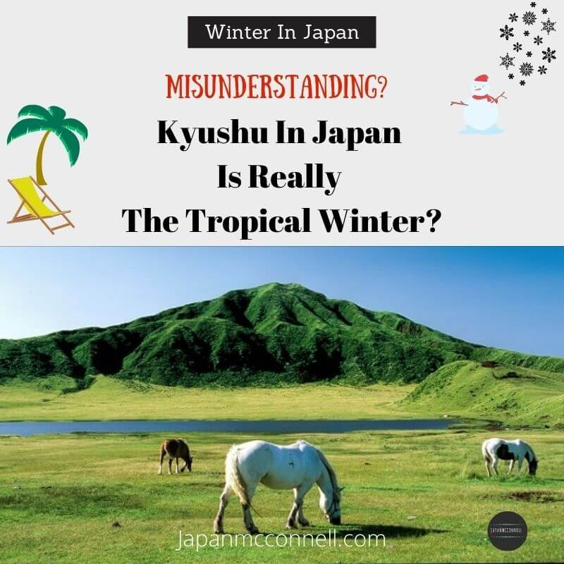 Kyushu is really the tropical winter, Japan