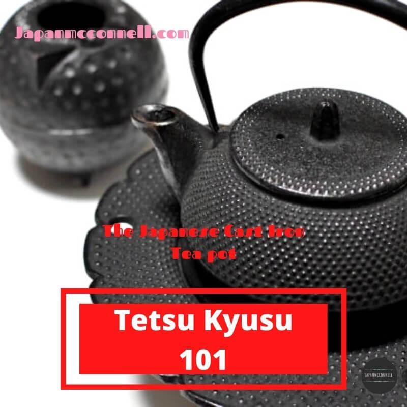 Japanese cast iron Kyusu teapot
